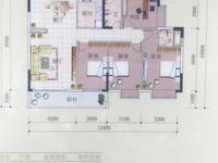 免中介费!开发区电梯房11 楼,南北向毛坯,7878元 平方包改名
