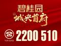 茂名碧桂园城央首府活动图
