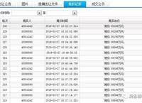 茂名3宗地块成功出让揽金16.5亿元!中国第一高楼开发商落户茂名!