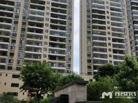 鸿福名苑,21楼, 东南向毛坯 ,视野超好,楼距宽,121万包改名