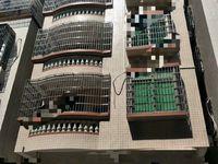文化广场附近荔红三街整栋楼共1223.18方共7层售1200万