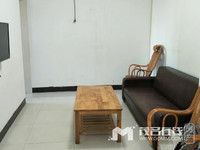 金色家园公寓,,2室2厅1卫,低层,60平方,精装修,西南,开价:45万