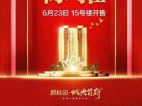 出售茂名碧桂园城央首府4室2厅2卫143平米9500万住宅