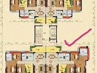 新收恒福尚城,中层,东南向,三面采光,睇花园,仅售146万包改名