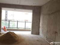 开发区高铁附近6米阳光复式53方3房2厅50.9万