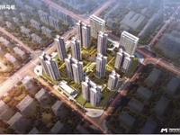 开发区金科美的,建面约98-130方 ,一手楼,团购优惠,免中介费