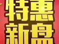 水东碧桂园电梯洋房