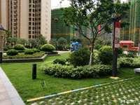 雅园小区 别墅地 395平方 一楼可建160平方 原价450万 现价395万